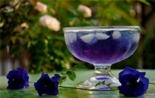 น้ำดอกอัญชันสมุนไพรต่อต้านอนุมูลอิสระในร่างกาย